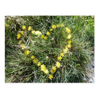 Postal Corazón de flores