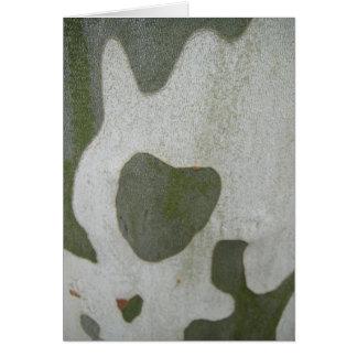 Postal corazón graugrünes verde gris en corteza, e tarjeta de felicitación