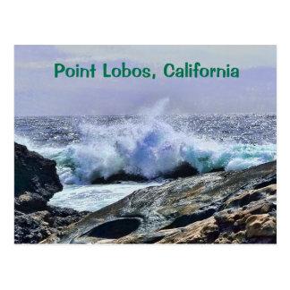 Postal Costa central California de Lobos del punto
