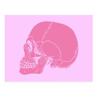 Postal Cráneo rosado en perfil