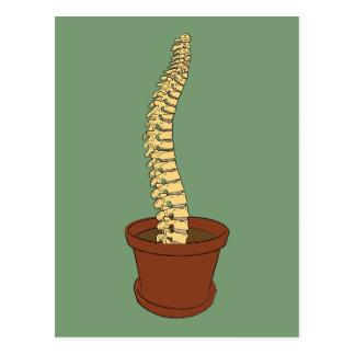 Postal Crezca una espina dorsal