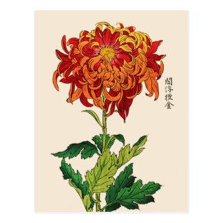 Postal Crisantemo del japonés del vintage. Moho y naranja