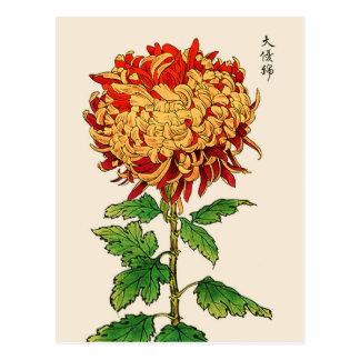 Postal Crisantemo del japonés del vintage. Oro y naranja
