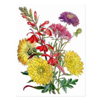 Postal Crisantemos amarillos y flor púrpura de Scabiosa
