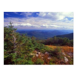 Postal Cumbre de las montañas del blanco de Moosilaukee
