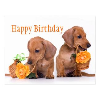 Postal Cumpleaños del Dachshund