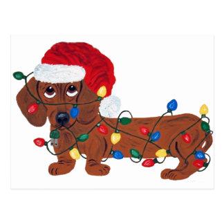 Postal Dachshund enredado en las luces de navidad (rojas)