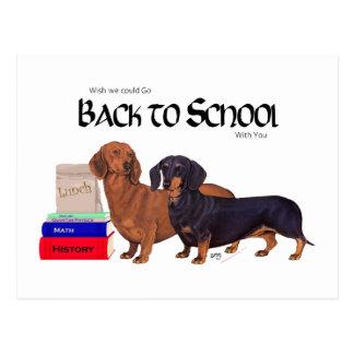 Postal Dachshunds de nuevo a escuela