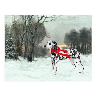 Postal Dalmatian en nieve del invierno