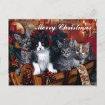 Postal de 4 Felices Navidad de los gatos