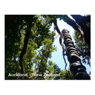 Postal de Auckland