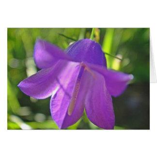 Postal de campanilla lila: a have wonderful day tarjeta de felicitación