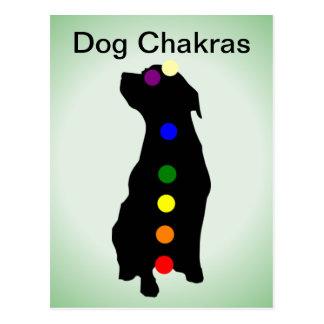 Postal de Chakras del perro