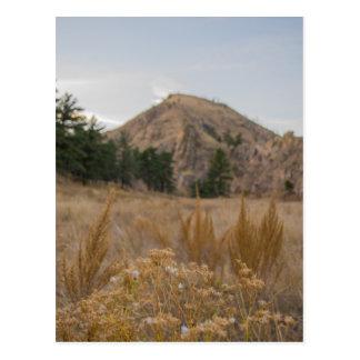 Postal de Colorado del barranco de Poudre