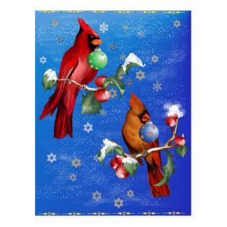 Postal de dos pájaros del navidad
