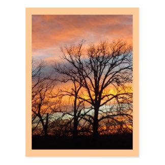 Postal de encargo de la puesta del sol 1 del