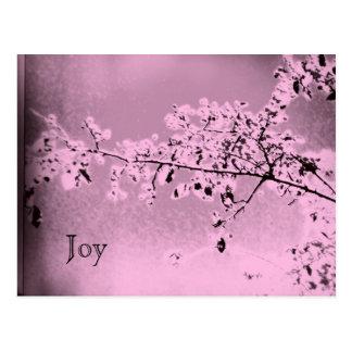 Postal de la alegría