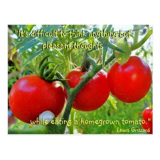 Postal de la cita de la diversión del tomate