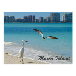 Postal de la fauna de la isla de Marco