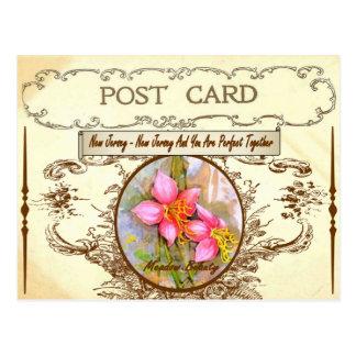 Postal de la flor de estado de New Jersey del