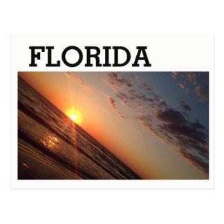 Postal de la Florida