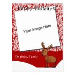 Postal de la foto del navidad de los tintineos