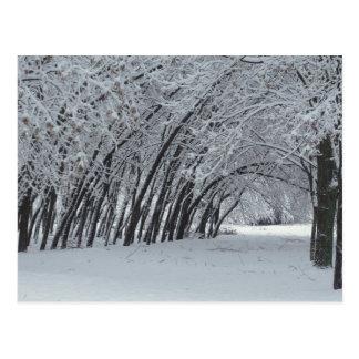 Postal de la foto del paisaje del invierno