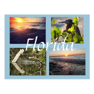 Postal de la fotografía de la Florida