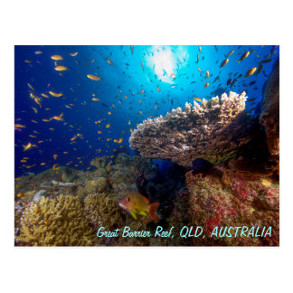 Postal de la gran barrera de coral