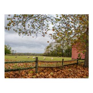 Postal de la granja de la caída de Connecticut