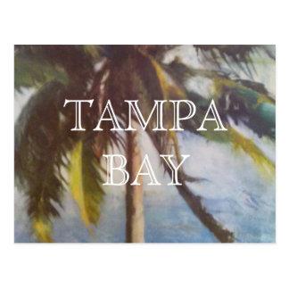 Postal de la palmera de Tampa Bay
