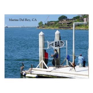 ¡Postal de la pesca de Marina Del Rey! Postal
