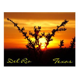 Postal de la puesta del sol del cepillo de Del Río