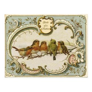 Postal de la reproducción del vintage del Birds of