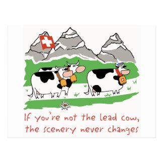 Postal de la vaca de la ventaja