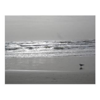 Postal de las ondas que relucir
