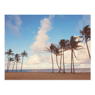 Postal de las palmeras de la isla de Kauai
