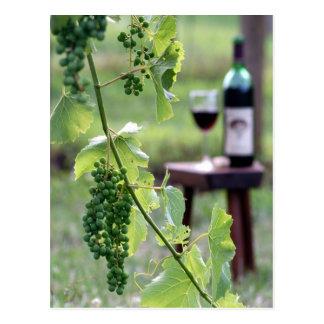 Postal de las uvas de Kentucky