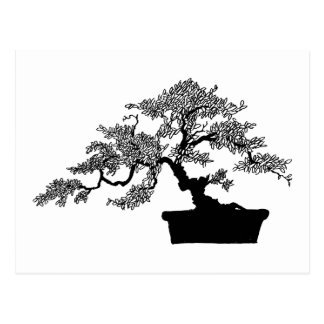 Postal de los bonsais