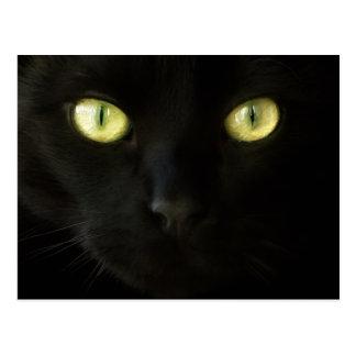 Postal de los ojos de gato