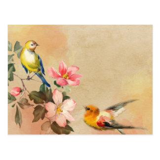 Postal de los pájaros del vintage