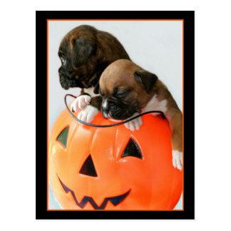 Postal de los perritos del boxeador de Halloween