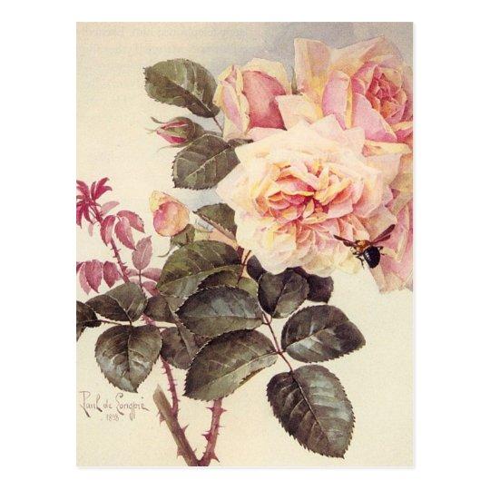Postal de los rosas del vintage
