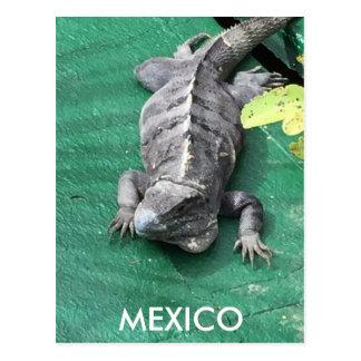Postal de México