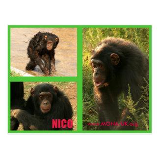 Postal de Nico