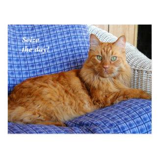 Postal de reclinación del gato