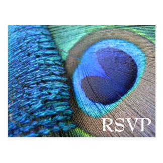 Postal de RSVP de la pluma del pavo real