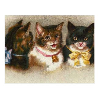 """Postal de """"tres gatos del vintage"""""""