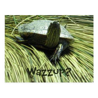 Postal de Wazzup