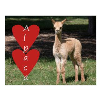 Postal del amor de la alpaca del bebé